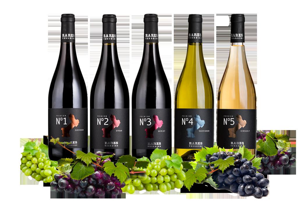 Accueil - Vignoble Wines&Brands - groupe Rares terroirs