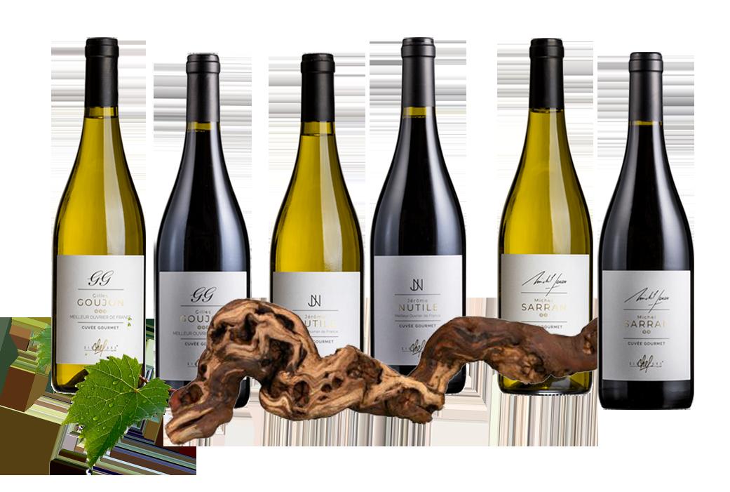 Accueil - Vignoble Wines&Brands - groupe Signature Chefs